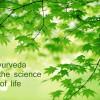 Ayurveda with Pranayama and Self Massage Workshop – Monday 26th January 2015