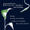 Electric Indie with WASABI BYTES, STRAY NATION and PANIC STATION at Overground Bar & Cafe – Tuesday 7th April 2015