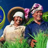 International Rice Congress 2014 @ Bitec Bangna – 27th to 31st October