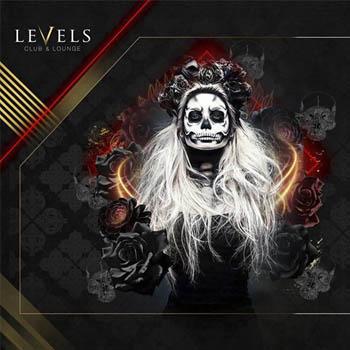 level main